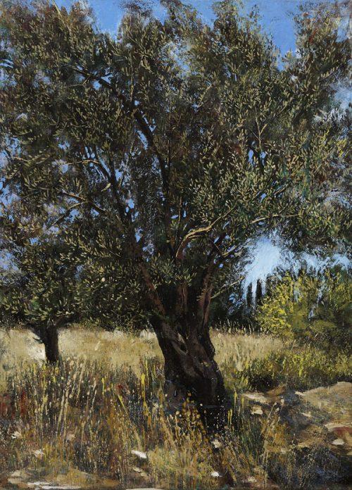 Landscapes Karditsa